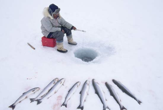 Things We Should Know About Ice Fishing