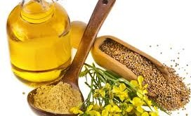 How Does Mustard Oil Stops Hair Fall ?