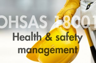 Mix Of Theory And Practical Works Best For OHSAS 18001 Training