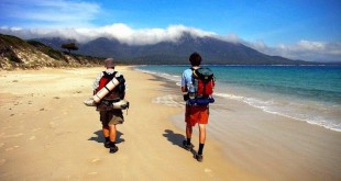 Our Top 3 Gap Year Options