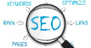 Right SEO Services For Online Website Popularity