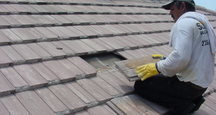 Rooftop Repair: The Essential Component Of Maintenance