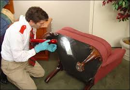 How and When To Hire A Pest Control Experts To Control Bed Bugs