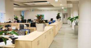 Enhance Employee Productivity In Office By Choosing The Best Office Fit-out