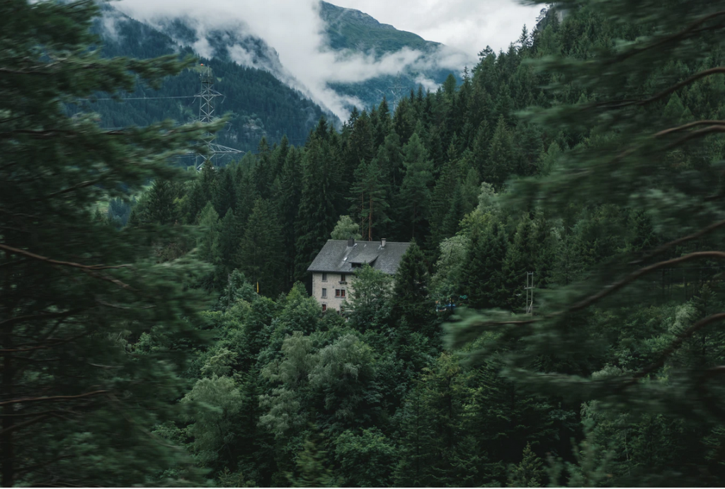 3 Things To Research Before Moving Off The Grid
