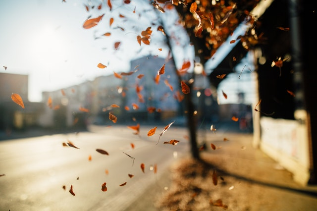 4 Ways To Prepare Your Air Conditioner For Fall