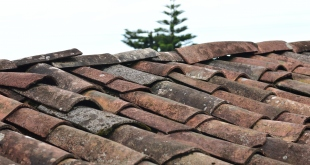 4 Things Homeowners Should Know About Mending Roofs