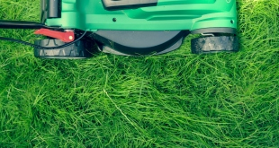 4 Types Of Equipment You'll Need When Starting A Landscaping Business