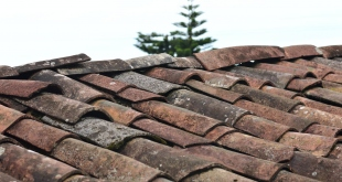 Signs It Might Be Time For A Roof Replacement