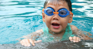 Above-Ground vs In-Ground Pools: Which Type Of Pool Is Best For Your Yard?